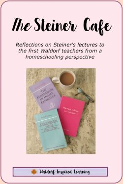 The Steiner Cafe - reflections on Steiner's lectures to the first Waldorf teachers from a homeschooling perspective.